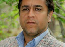 محمدرضا حدادیان مدیر و پژوهشگر میراث فرهنگی